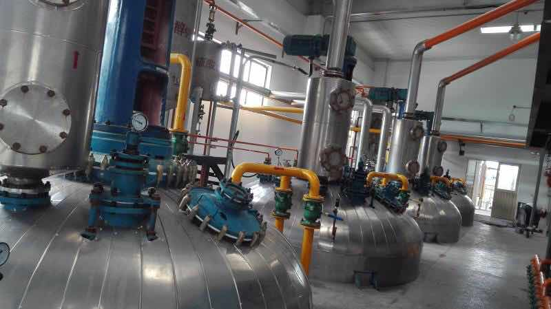 Edible oil refining machine
