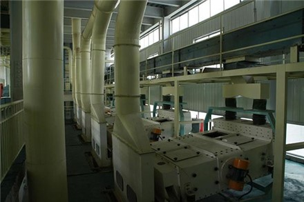 Peanut oil extraction production line