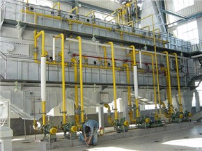Rice bran oil extraction production line